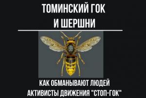 "Томинский ГОК и Движение ""СТОП-ГОК"". Вода и Шершни"